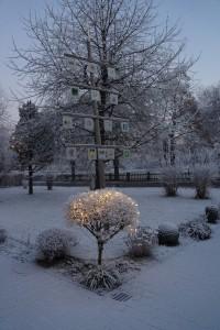 kirchenbaum-mit-beleuchteten-baeumchen