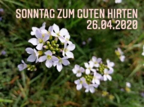 Gottesdienst am Sonntag zum Guten Hirten aus der Auferstehungskirche Töging, 26.04.2020